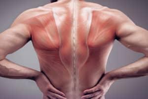 EMS-Training gegen muskuläre Dysbalancen